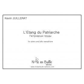 Kevin Juillerat l'étang du patriarche - printed version